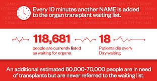 Human Organ 3